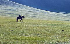 Cavalier dans la steppe