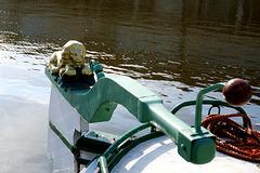Lion on the rudder