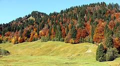 Herbst im Bregenzerwald