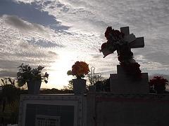 Cimetière Panaméen / Panamanian cemetery
