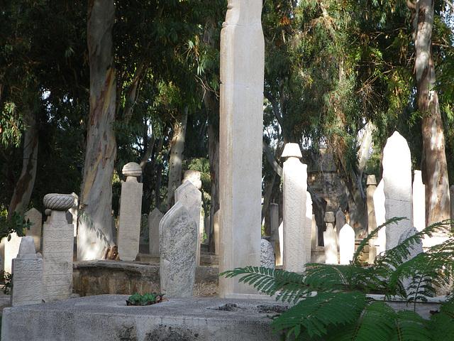 Cimetière musulman près du vieux port.