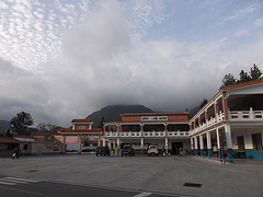 Pékin Panaméen / Panamanian Pekin