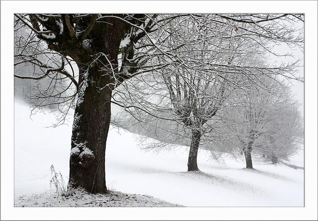 ...an diesem winterlichen Tag...