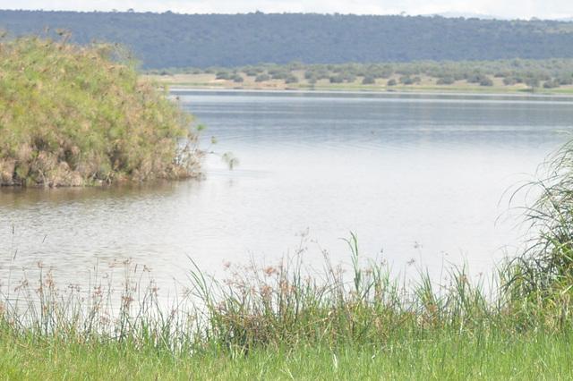 Unu el la multaj lagoj de la parko, kie troveblas hipopotamoj kaj krokodiloj