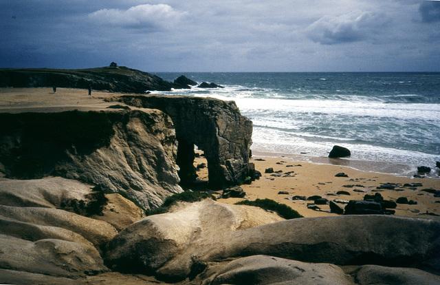 Wilde Natur - Wilde Küste