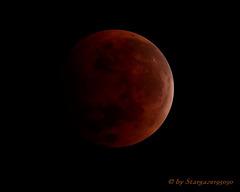 Blood moon during the total lunar eclipse October 2014 (TimeLapse)