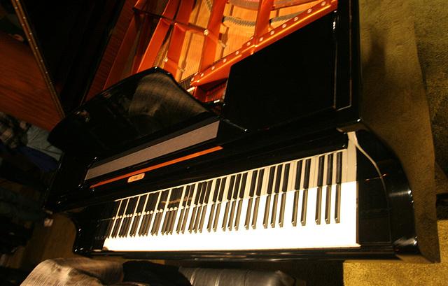 Nethercutt Collection - 96-key Piano (9040)