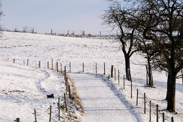 Schneeweg - 121208