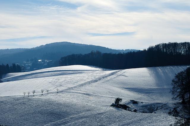 Winterleuchten - 121208