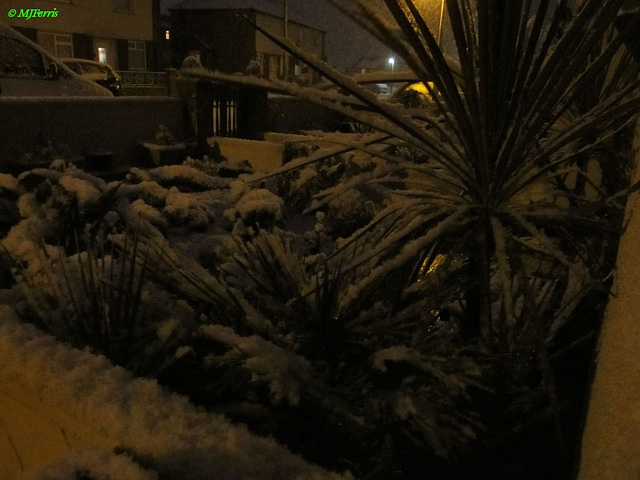 07 more snow