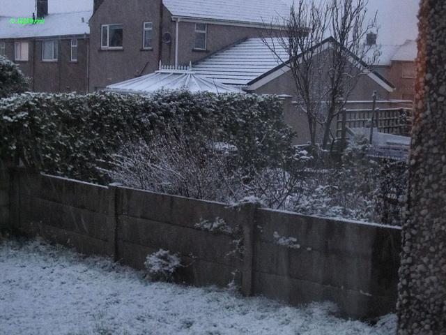 10 more snow