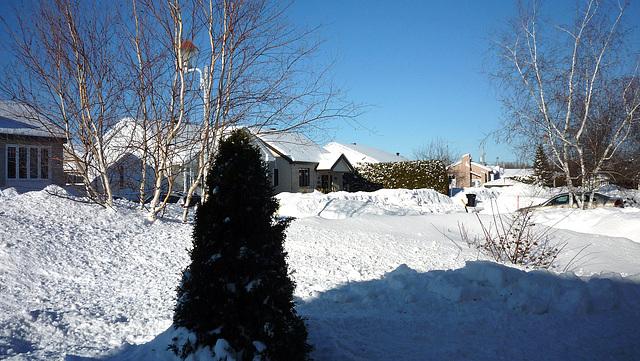 Trop de neige cette année....
