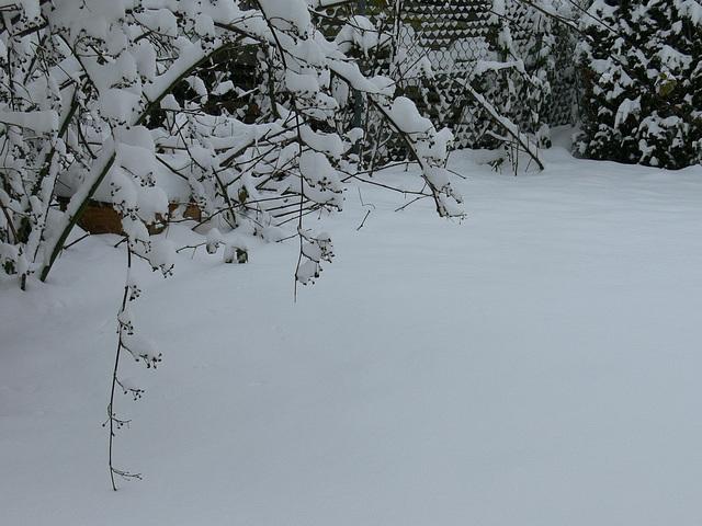 weiße Decke