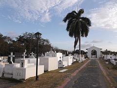 Cimetière Panaméen /Panamanian cemetery