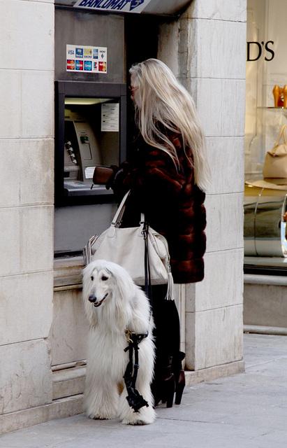 elle a du chien !