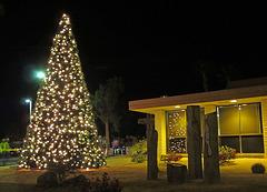 DHS Christmas Tree Lighting (1394)