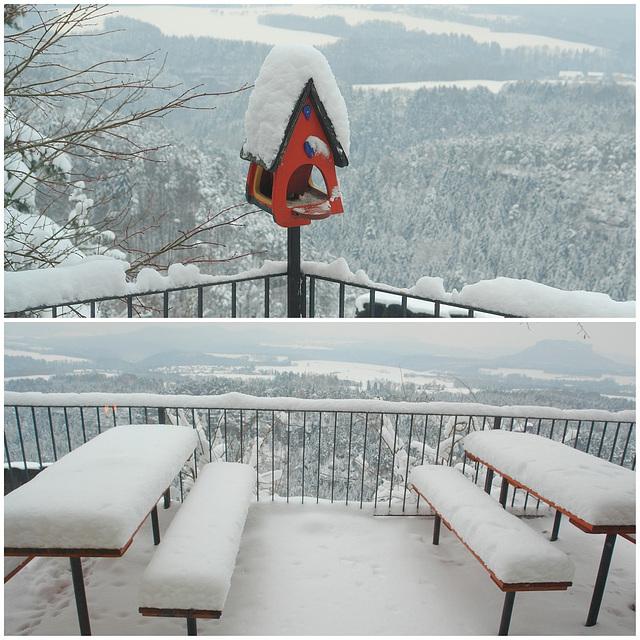 Rot-weiß - Sächsische Schweiz - 'Brandaussicht' 22.2.2013