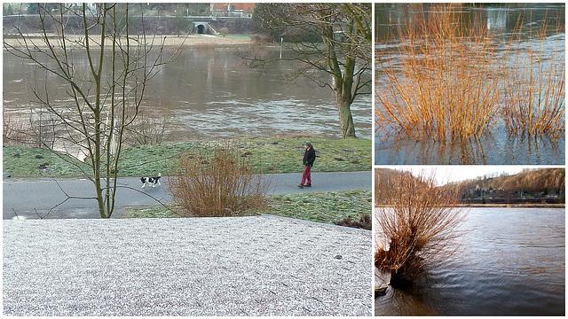 Elbhochwasser am Sonntag den 3.2.2013 - 5.40m