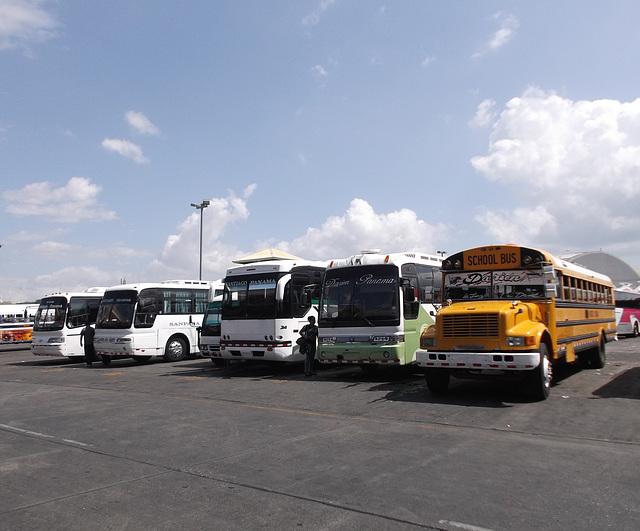 Autobus panaméens / Panama buses.