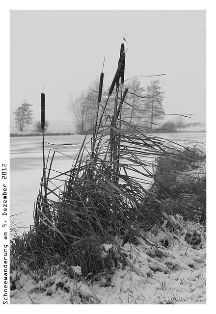Snowy hike-tour around Wiesenbronn