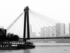 Willemsbrug - mit Maaskade