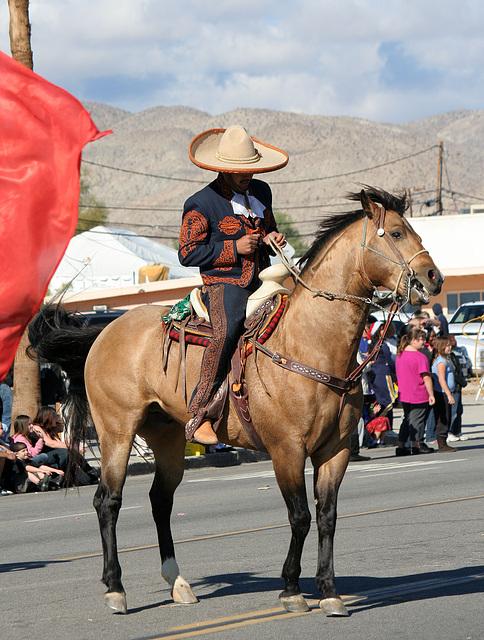 DHS Holiday Parade 2012 (7898)