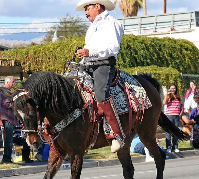 DHS Holiday Parade 2012 (7913)