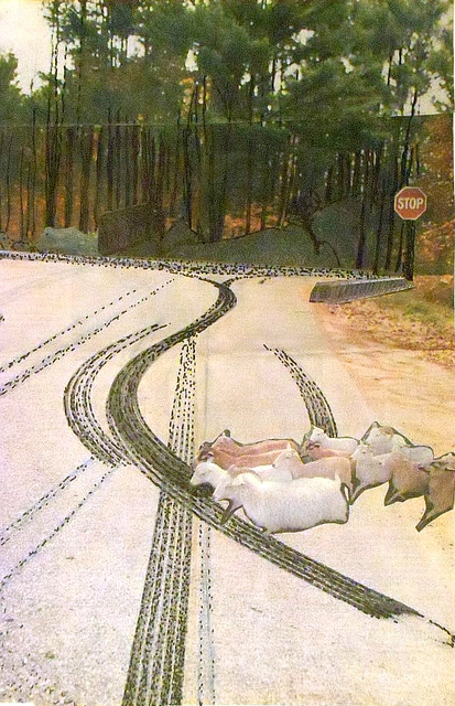 """""""THE SKIDDING"""" ou """"LE DÉRAPAGE"""" (Collage by  E.Cole)"""