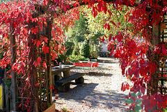 Ettaler Mühle. Herbstlaub. ©UdoSm