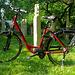 Mein neues Elektro-Fahrrad