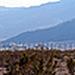 Panorama from Skyborne (2)