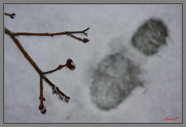 Un pas de plus vers l'hiver