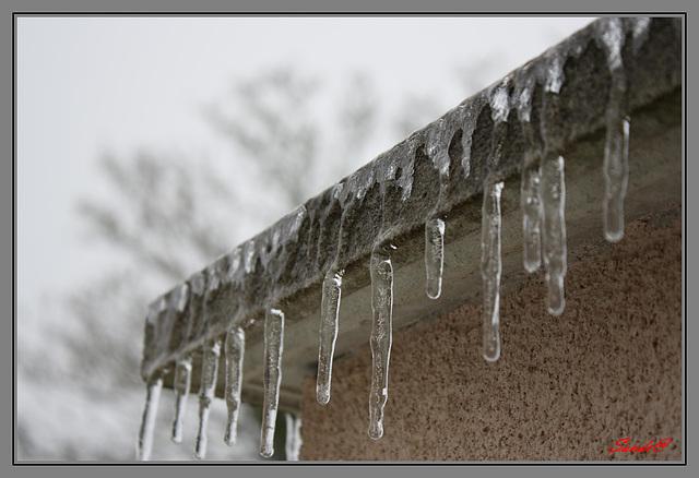 Stalactites hivernales