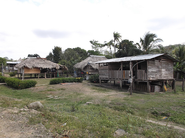 Maisons Wounaans / Wounaans houses.
