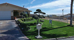10796 Cactus Drive (1)