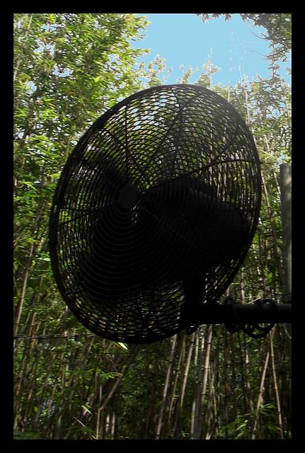 Pole outdoor big fan / Ventilateur géant - Recadrage