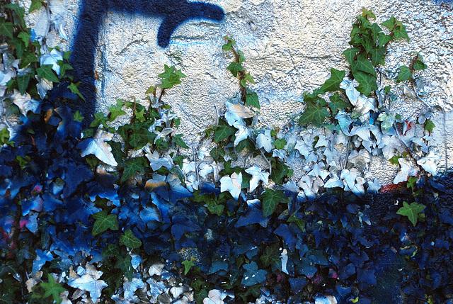 Graffeur peux respectueux de la nature