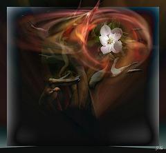 Je veux que le vent les emporte,  les escorte à tout jamais............... et ..............me retrouver