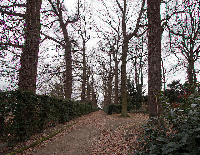 20121125 1695RWw Schlosspark