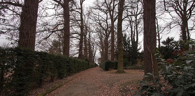 20121125 1696RWw Schlosspark