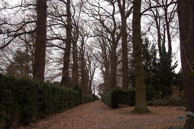 20121125 1697RWw Schlosspark