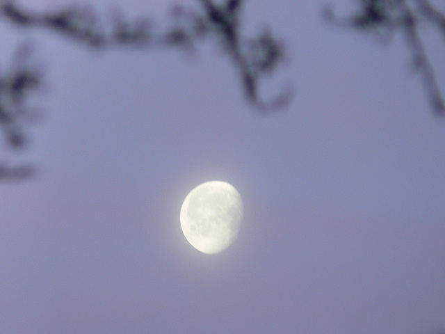 Mond am Neujahrstag 2013