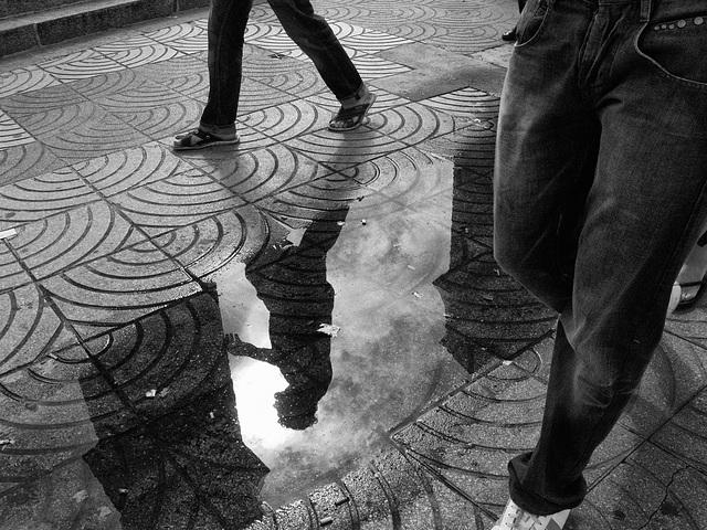 caminando por la vida