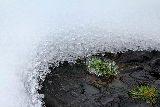 Concrétions de glace (4)