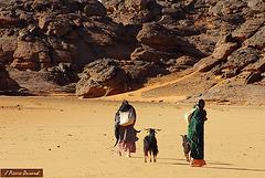 Tadrard Lybienne