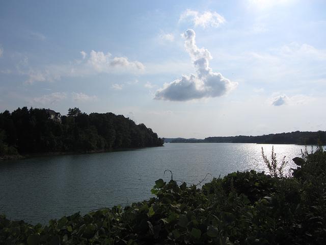 Douglas Lake - 5