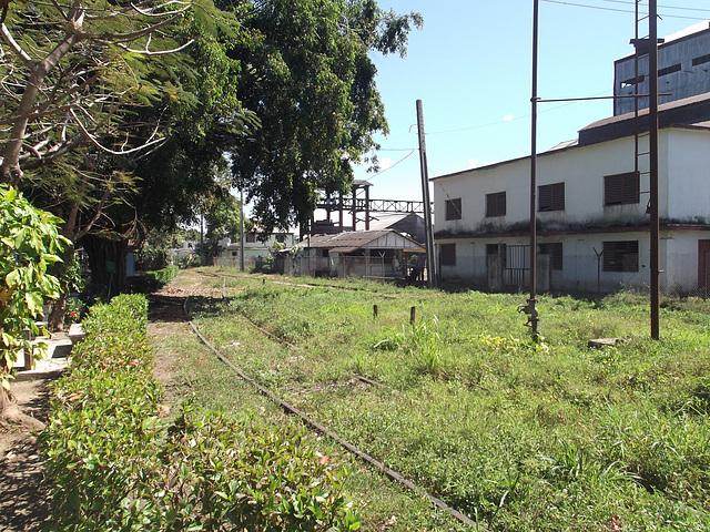 In the cuban style factory / Usine à la cubana - 19 mars 2012.