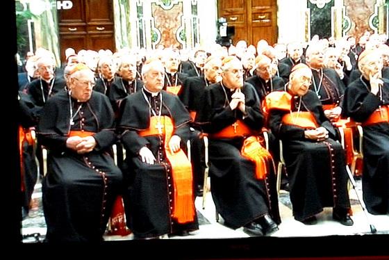 Abschied von Papst Benedikt XVI - am 28.2.2013 Kardinäle