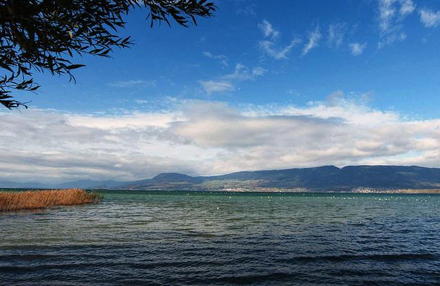 Au bord du lac de Neuchâtel...