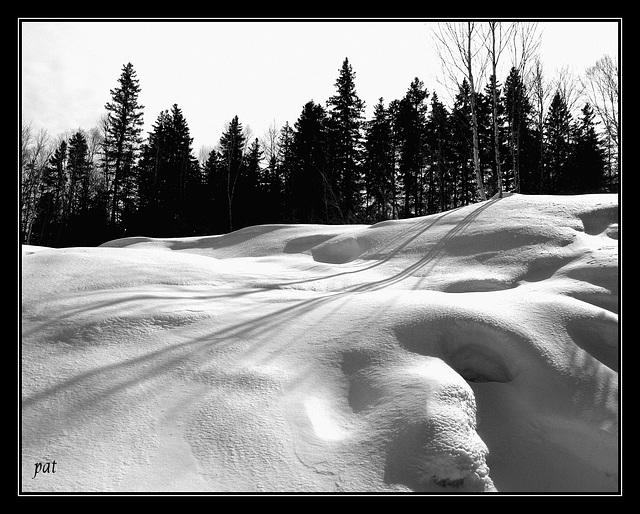 Ombres et lumieres  au Quebec